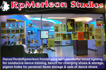 RpMerleon Studios Inside View